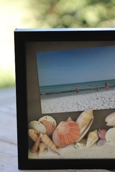 How to display seashells