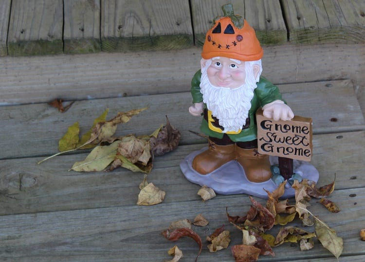 gnome for all seasons 2