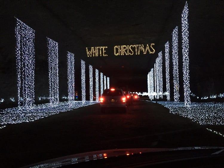 Lights Under Louisville 3