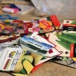 Saving Garden Seeds for Next Year & Beyond
