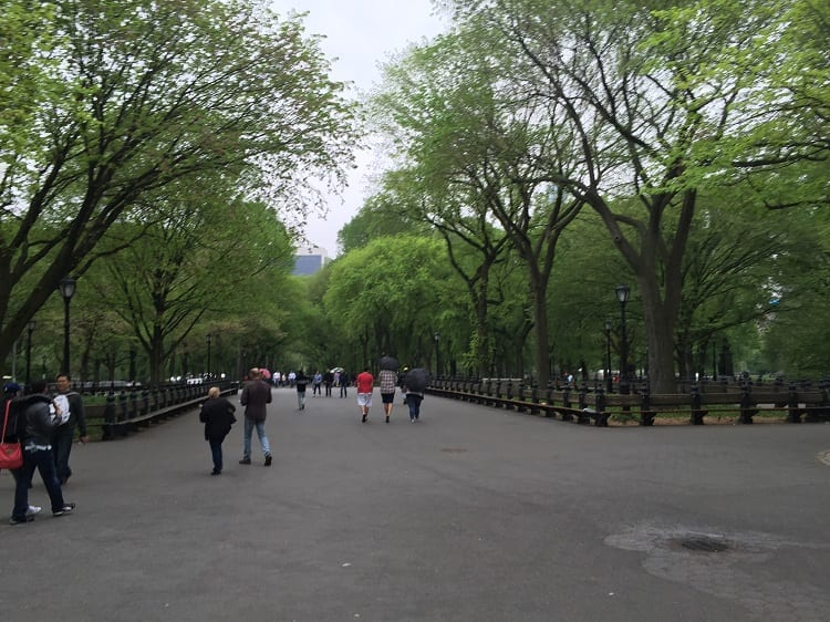 nyc central park 2