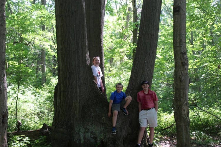 Chimney Bluffs State Park Lake Ontario