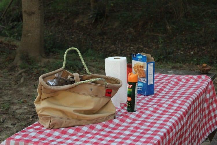 bag for picnic table