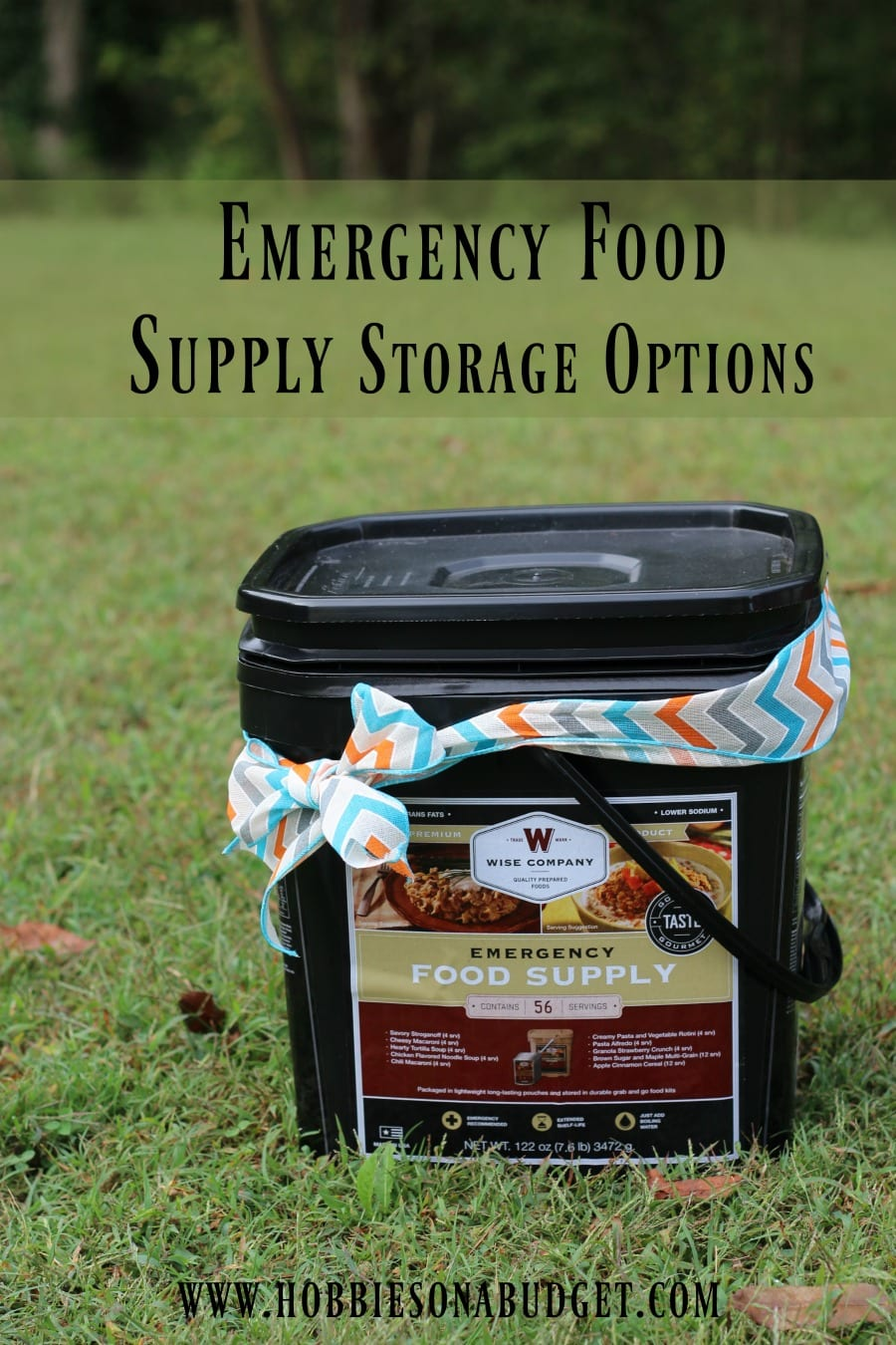 emergency-foold-supply-storage-options