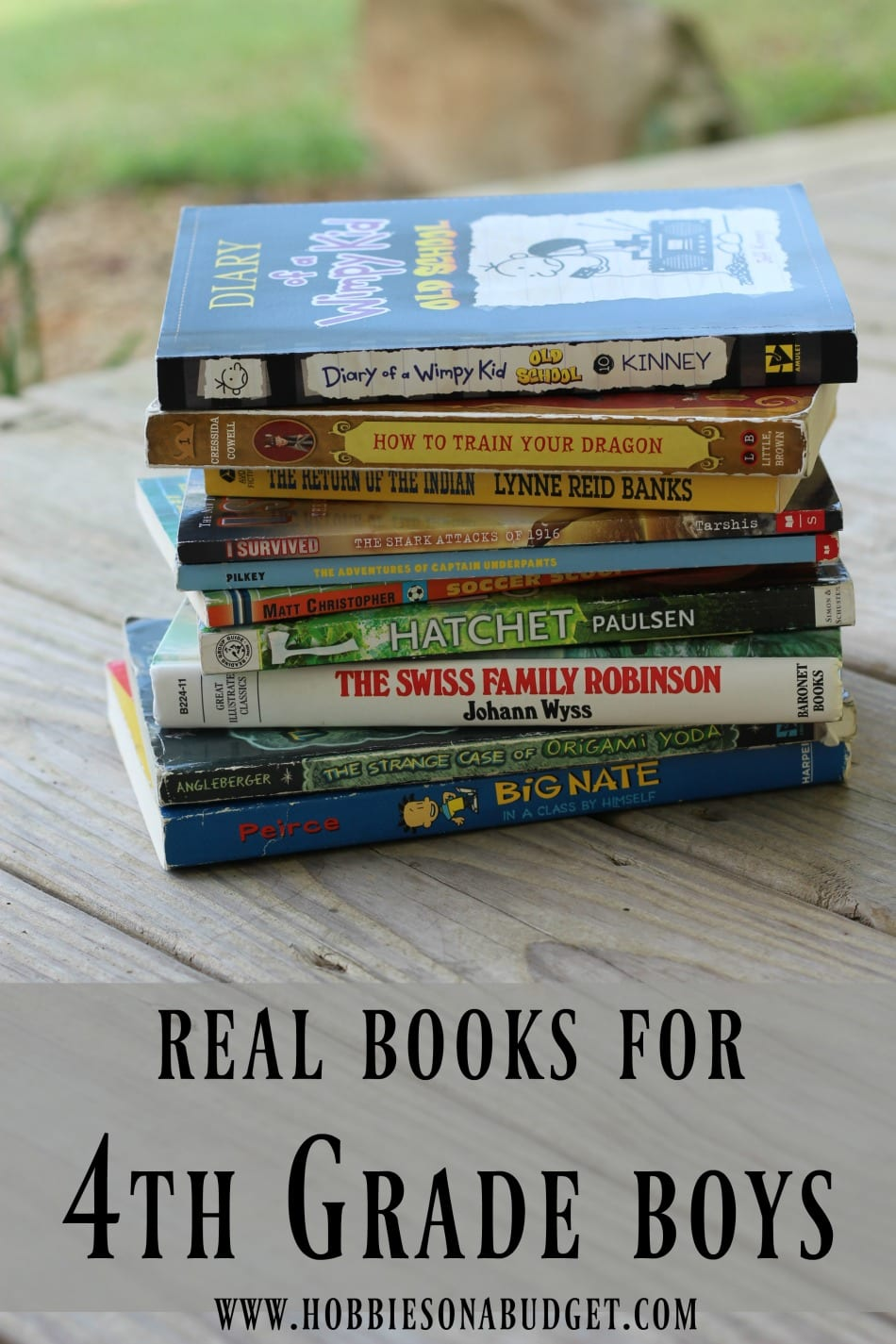 Real books for 4th grade boys hobbies on a budget real books for 4th grade boys jeuxipadfo Images