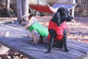 henry-and-sadie-winter-coats