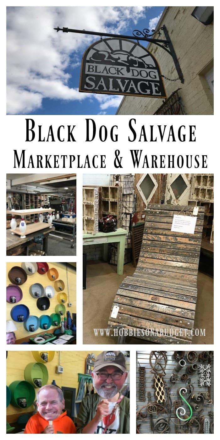 Black Dog Salvage Marketplace & Warehouse Visit