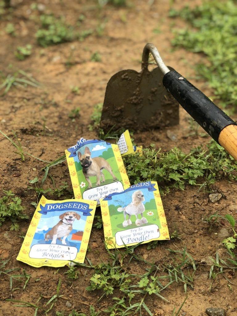 New Gift Ideas for Gardeners