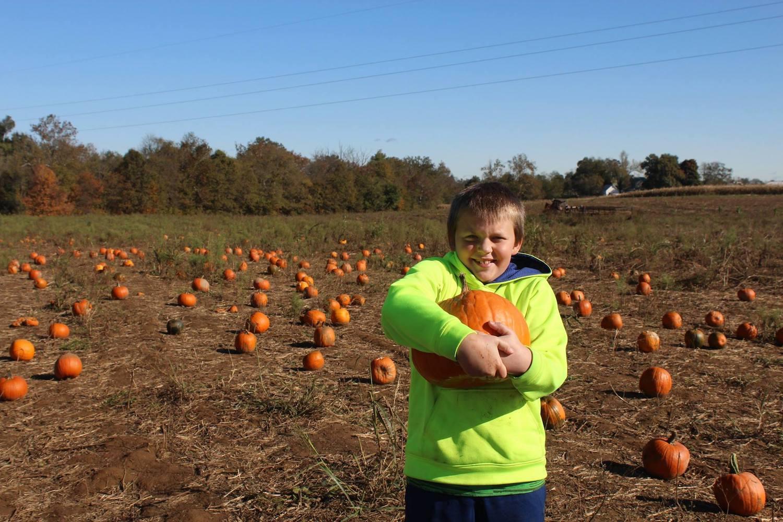 Fall Pumpkin Patch Fun