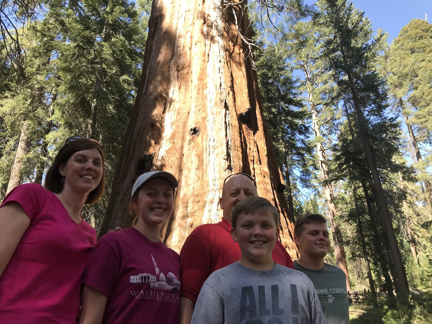 Giant Sequoia Trees Kings Canyon