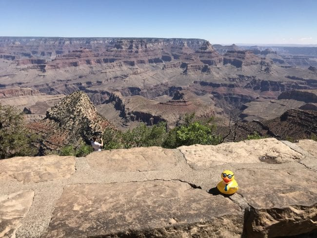 Seymour at the Grand Canyon