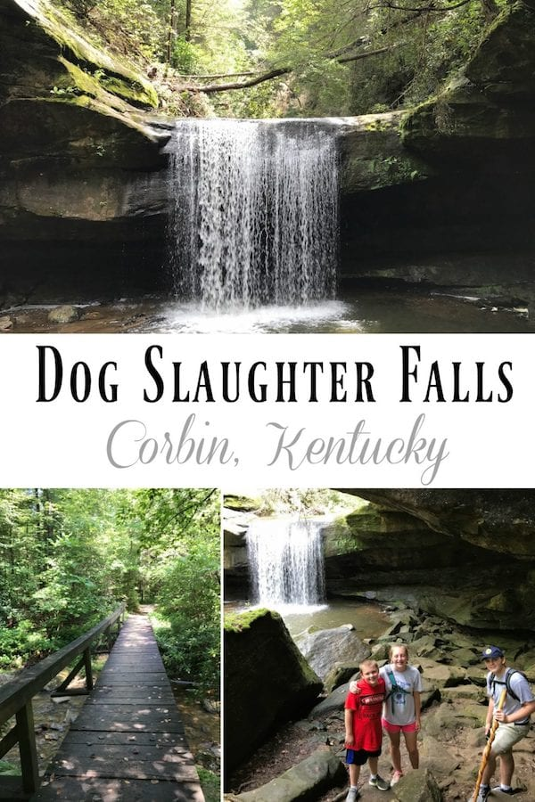 Dog Slaughter Falls Corbin Kentucky