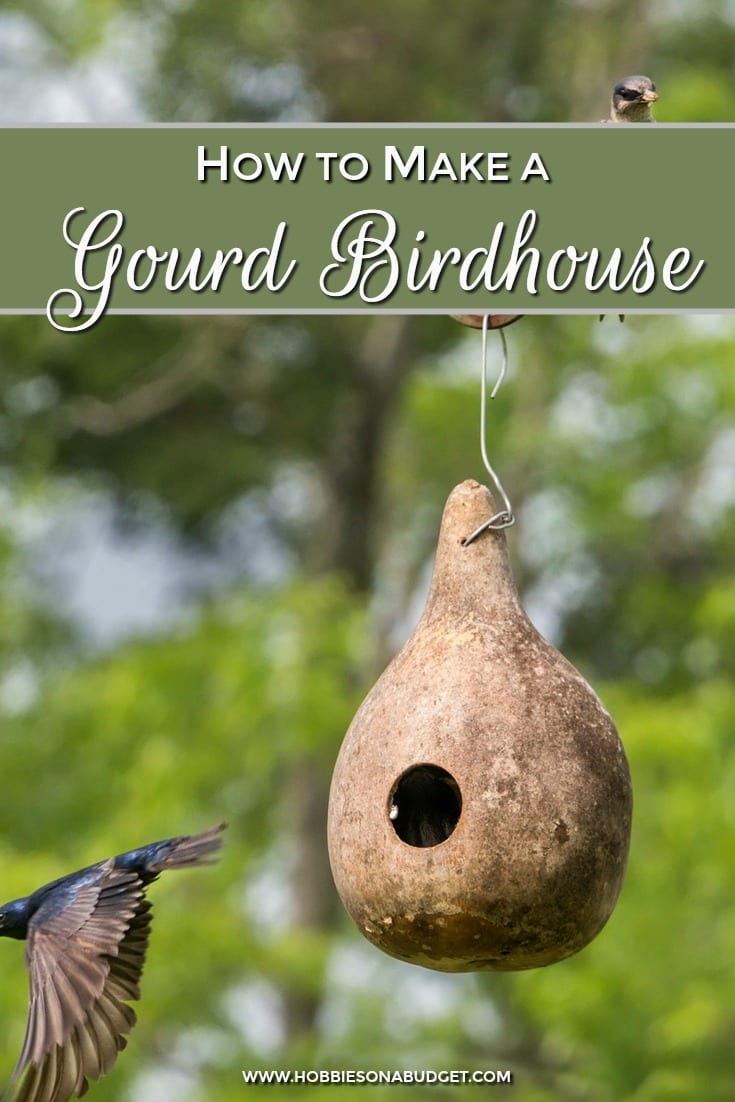 Gourd Birdhouse How to Make
