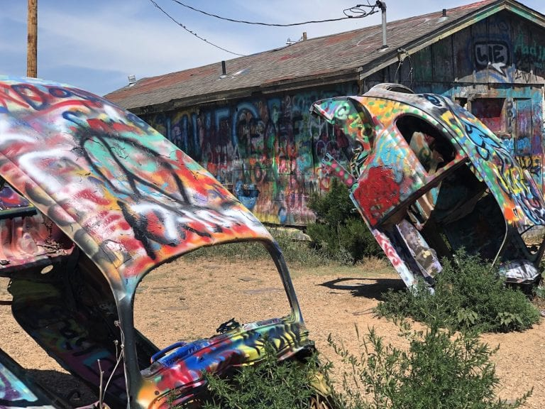 What to Expect at Slug Bug Ranch