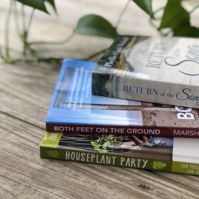 How to Find a New Book + New Book Suggestions