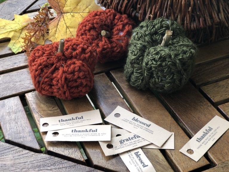 Easy Thanksgiving Crocheted Pumpkins
