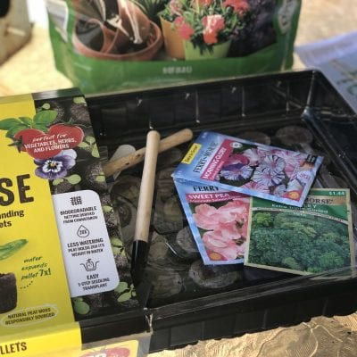 6 Things I'm Doing NOW to Prepare for Spring Gardening